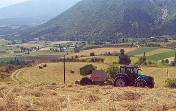 Hay baling at a height