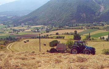 Hay baling at aheight