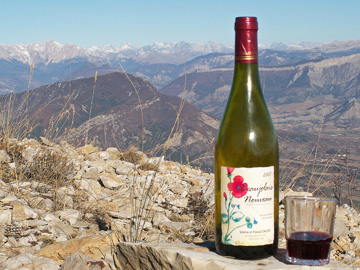 Beaujolais and view of the Alps